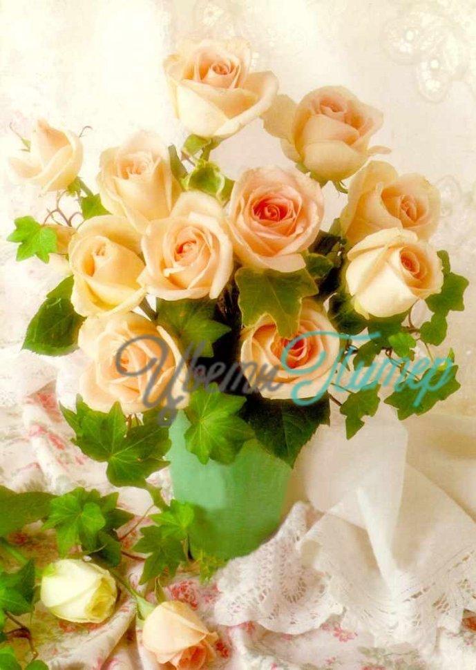 Цветы в горшках название и 15