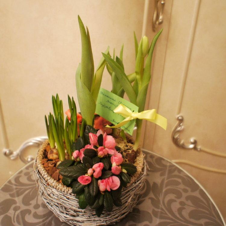 Купить композиции из живых цветов на 8 марта